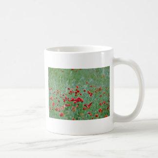 Corn poppies (Papaver Rhoeas)  flowers Coffee Mugs