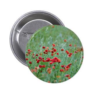 Corn poppies (Papaver Rhoeas)  flowers Pinback Button
