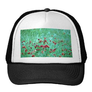 Corn poppies (Papaver Rhoeas) Mesh Hats