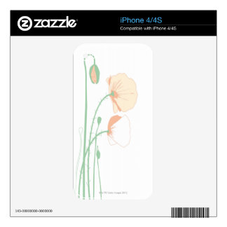 Corn Poppy Decal For The iPhone 4S