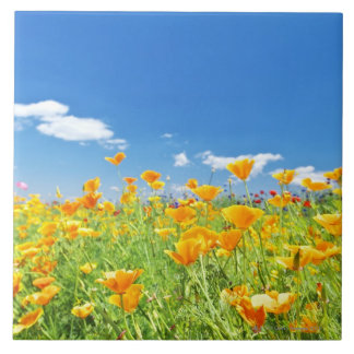 Corn Poppy Field 2 Ceramic Tile