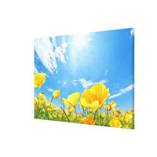 Corn Poppy Field Canvas Prints