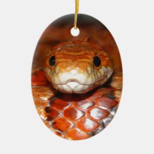 Corn Snake Christmas Ornaments Zazzle 100 Satisfaction Guaranteed