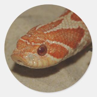 Corn snake classic round sticker
