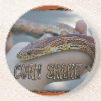 CORN SNAKE COASTERS (RED RAT SNAKE)