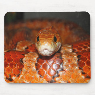 Corn Snake Mouse Pad