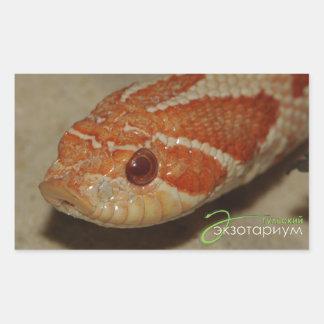 Corn snake rectangular sticker