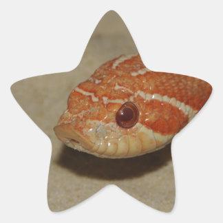 Corn snake star sticker