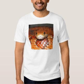 Corn Snake T Shirts
