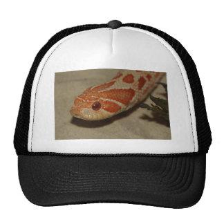 Corn snake trucker hat