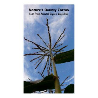 Corn Stalk - Fresh  Garden Vegetables Business Card