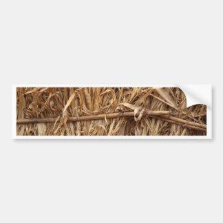 Corn Straw Bumper Sticker