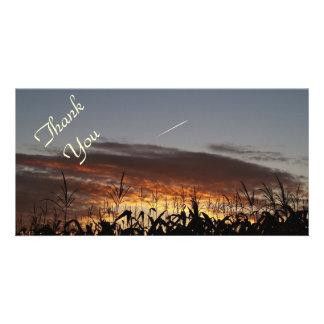 Corn Tassel Sunrise Personalized Photo Card
