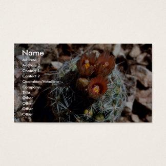 Corncob Cactus Business Card