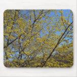 Cornelian Cherry Dogwood and Blue Sky Mouse Pad