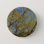 Cornelian Cherry Dogwood and Blue Sky Pinback Button