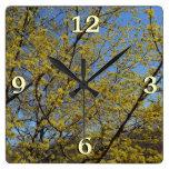 Cornelian Cherry Dogwood and Blue Sky Square Wall Clock