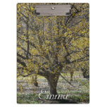 Cornelian Cherry Dogwood and Glory of the Snow Clipboard