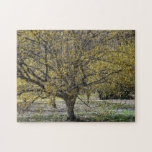 Cornelian Cherry Dogwood and Glory of the Snow Jigsaw Puzzle