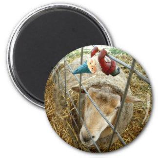 Cornelio y las ovejas imán redondo 5 cm