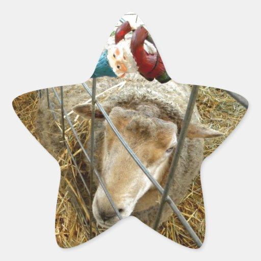 Cornelio y las ovejas pegatina en forma de estrella