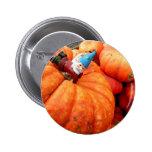 Cornelius Harvest Button