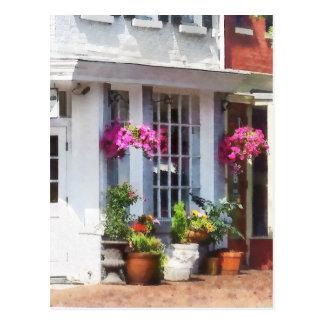 Corner of King Street and S Alfred Alexandria VA Postcard