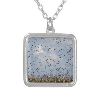 Cornfield and common starlings silver plated necklace