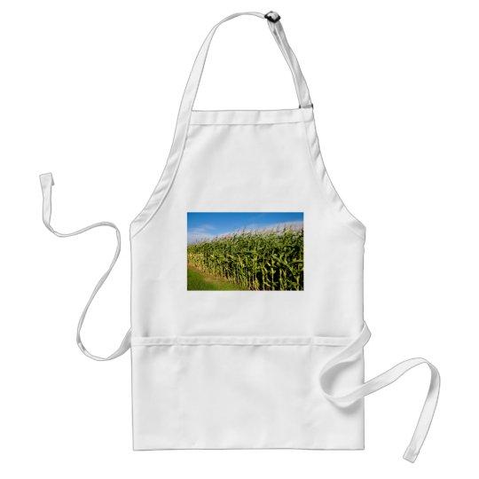 cornfield and sky adult apron