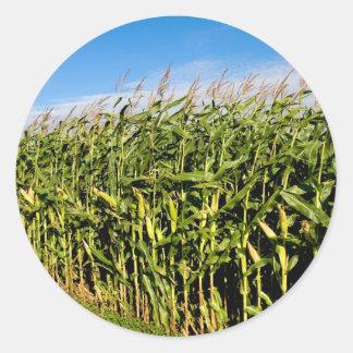 cornfield and sky classic round sticker
