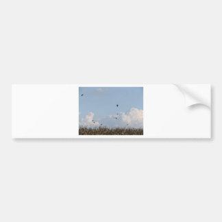 Cornfield and swallows bumper sticker