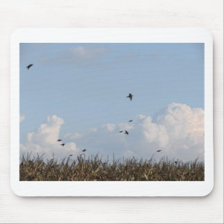 Cornfield and swallows mouse pad