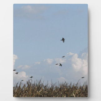 Cornfield and swallows plaques