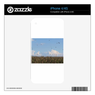 Cornfield and swallows skin for iPhone 4S
