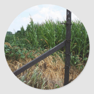 Cornfield Behind The Fence Classic Round Sticker