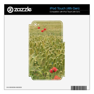 Cornfield Skin For iPod Touch 4G