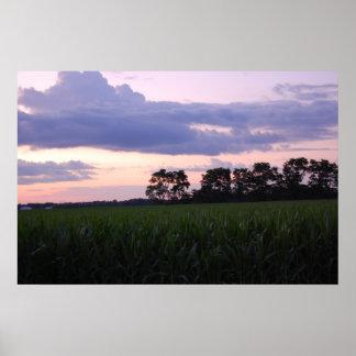 Cornfield Sunset Poster