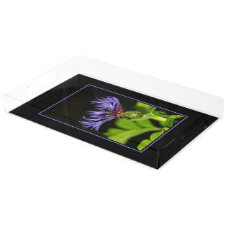 Cornflower 2 rectangle serving trays