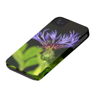 Cornflower 2 Case-Mate iPhone 4 case