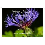 Cornflower 2 plantillas de tarjetas de visita