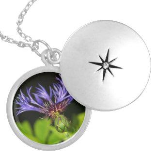 Cornflower 2 round locket necklace