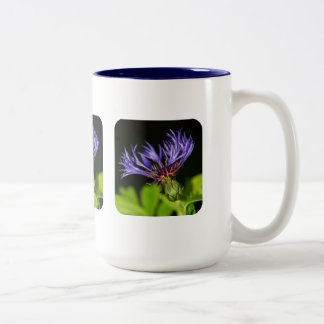 Cornflower 2 Two-Tone coffee mug