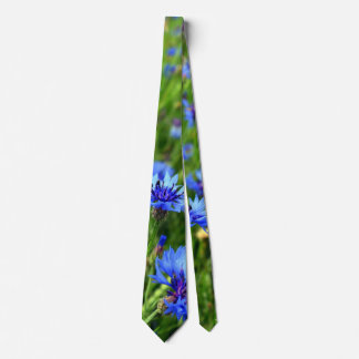 Cornflower blossom field neck tie