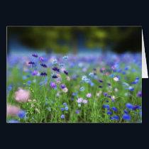Cornflower Blue Card