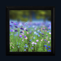 Cornflower Blue Jewelry Box
