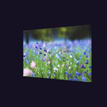 Cornflower Blue Wrapped Canvas