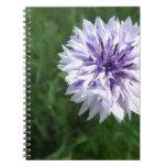 Cornflower Cuadernos