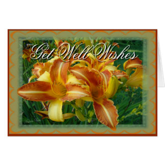 Cornflower Get Well card- customize any occasion Greeting Card