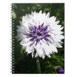 cornflower libro de apuntes