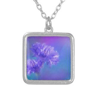 Cornflower púrpura azul de la flora de la flor del collar plateado